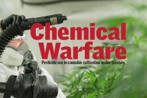 Cannabis Pestcide Solutions
